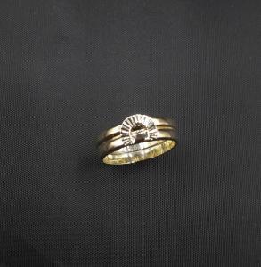 Dasspeldornament op beider trouwringen  samen gesmeed