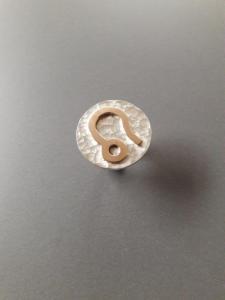 Zilveren ring met familiegoud